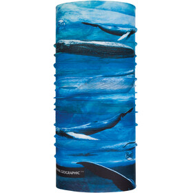 Buff National Geographic Coolnet UV+ Neck Tube Blue Whale